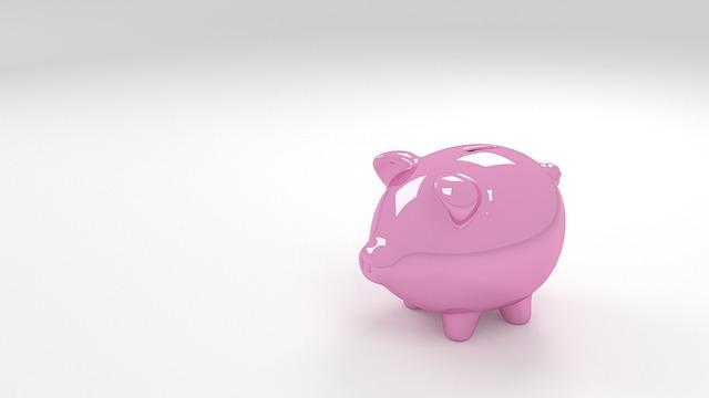 poskytnout peníze